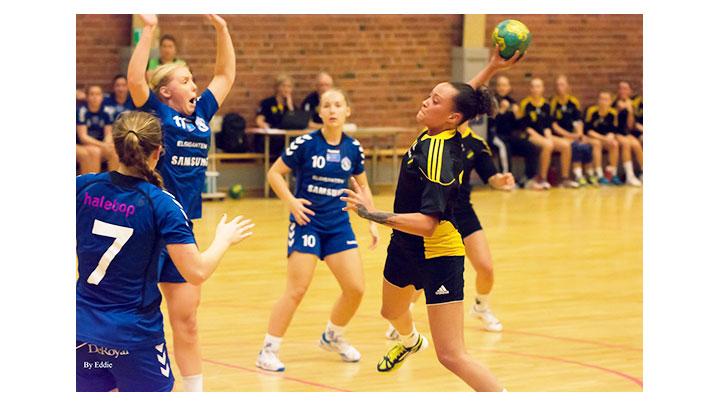 handboll_dam_2014_01